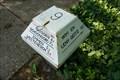Image for ANWB Mushroom mailbox
