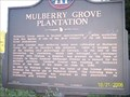 Image for MULBERRY GROVE PLANTATION - GHM 023-39