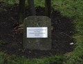 Image for Christopher Bardwell B. Sc. Tree on Bradford University Campus - Bradford, UK
