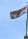 Image for City of Melbourne Municipal Flag