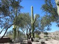 Image for Eagle Mountain Golf Course Cell Tower - Fountain Hills, Arizona