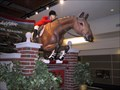 Image for Spruce Meadows Jumper at the International Airport - Calgary, Alberta