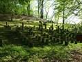Image for židovský hrbitov / the Jewish cemetery, Jemnice, Czech republic
