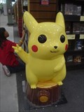 Image for Victorious Pikachu in Fremont California