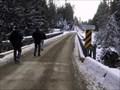 Image for Crawford Creek Bailey Bridge - Crawford Creek, British Columbia