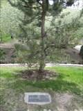 Image for Mrs. E. O . Howards - Memory Grove Park - Salt Lake City ,Utah