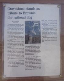 Brownie The Railroad Dog