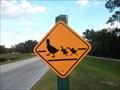 Image for Duck Crossing Sign - Disney World - Orlando, FL