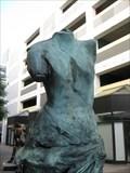 Image for Howard Street Venus - San Francisco, CA