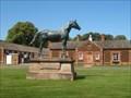 Image for Persimmon - Race  Horse - Sandringham Norfolk