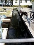 Image for Kern River Fish Hatchery- Kernville, CA, USA