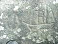 Image for Ozette Beach Petroglyphs