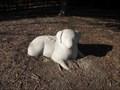 Image for Brookglenn Park Dog Sculpture - Saratoga, CA