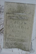 Image for Persons Pioneer Cemetery - Sheldon, NY