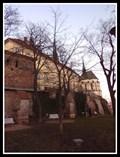 Image for Strom Milénia (Denisovy sady) - Brno, Czech Republic