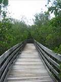 Image for Town Square Nature Park Boardwalk - Indian Shores, FL