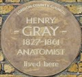 Image for Henry Gray - Wilton Street, London, UK