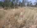 Image for 84636 - 100km Mark - N of Injune, QLD