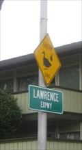 Image for Duck crossing - Santa Clara, CA