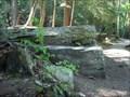 Image for Penny Rock, Salt Springs State Park - Franklin Forks, PA