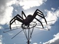 Image for Spooky Spider - Avondale, Auckland, New Zealnd