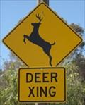 Image for Deer Crossing - San Jose, CA