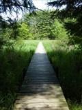 Image for Boardwalk - Audubon Nature Center and Sanctuary