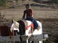 Image for Cowboy Mailbox - Springville, CA