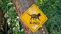 Image for I Tawt I Taw a Puddy Tat - Rossland, BC