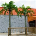 Image for Hooters Palm Trees - Newark, DE