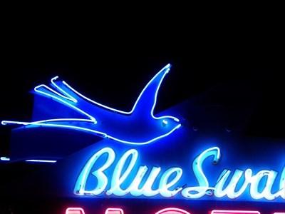 veritas vita visited Blue Swallow Motel