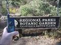 Image for Wildcat Canyon Botanic Garden