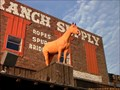 Image for Luskey's Ryon Saddle & Ranch Supply