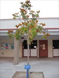 Image for Class of 2004 Bathgate School - Mission Viejo, CA