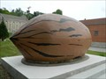 "Image for World's Largest Pecan - ""Nut Case"" - Brunswick, Mo."