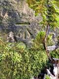 Image for Cut Bench mark - Oldway railway bridge - Hatch Beauchamp