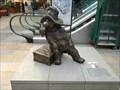 Image for Paddington Bear - London, UK