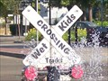 Image for Wet Kids Crossing - Manteca, CA