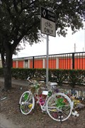 Image for Chelsea Lee Norman -- West Gray St. at Waugh St, Houston TX