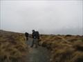 Image for Kepler Track- New Zealand