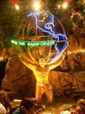 Image for Rescue the Rainforest - Rainforest Cafe - Lake Buena Vista, FL