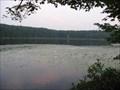 Image for Moss Lake Bog - Rushford, NY