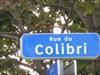 Rue Colibri no-2    Colibri street no-2