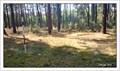 Image for TB 1413-28 Za okenicí, CZ