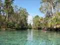 Image for Three Sisters Springs (Florida)