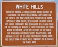 Image for White Hills