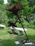 Image for Venus Flytrap - Gainesville, FL