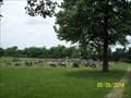 Image for St. John's Lutheran Cemetery Stones Prairie near Purdy, MO