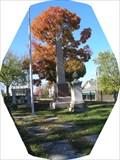 Image for John Sappington Marmaduke Jefferson City MO
