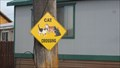 Image for Cat Crossing - Philipsburg, MT
